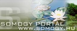 somogy_palyazat