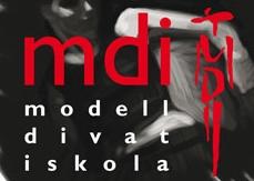 mdi_logo1