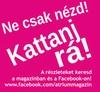 atrium-palyazat_a
