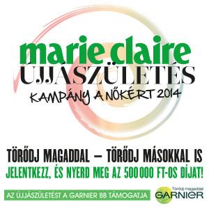 MC-Kampany-2014-banner