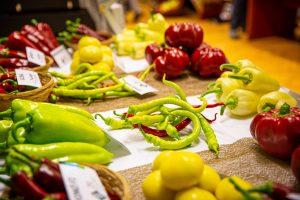 Kertészeti beruházások pályázat