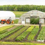 Kertészeti üzemek korszerűsítése – a felhívás felfüggesztése